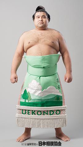 大相撲力士人気投票